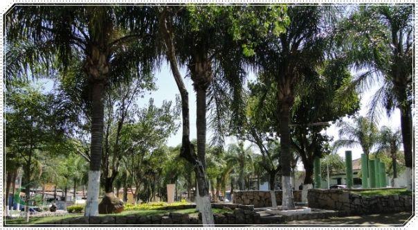 Praça da Biblia - Pq. Amarilys - Itupeva - SP