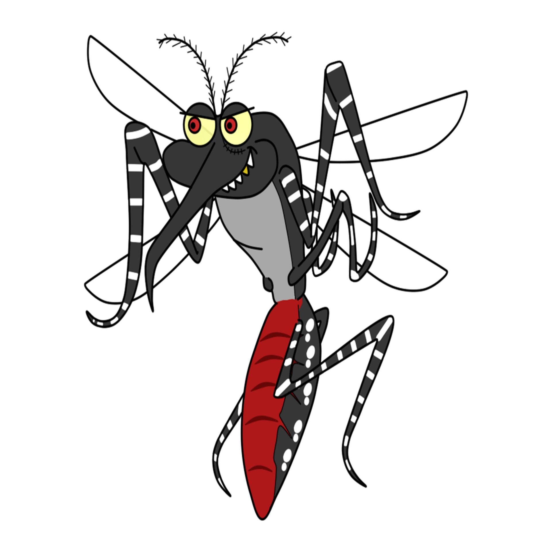 Aedes do bem está de volta em Itupeva
