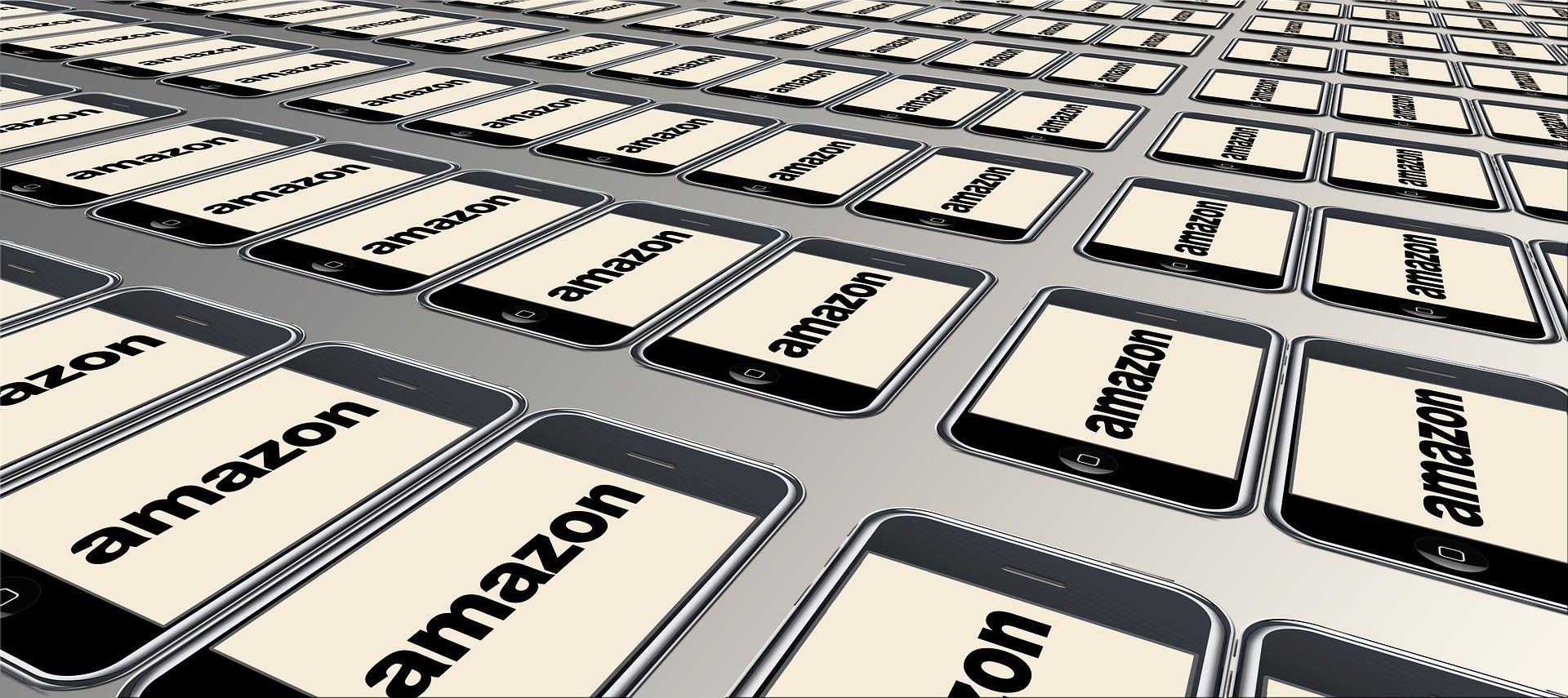 Amazon: História de Sucesso