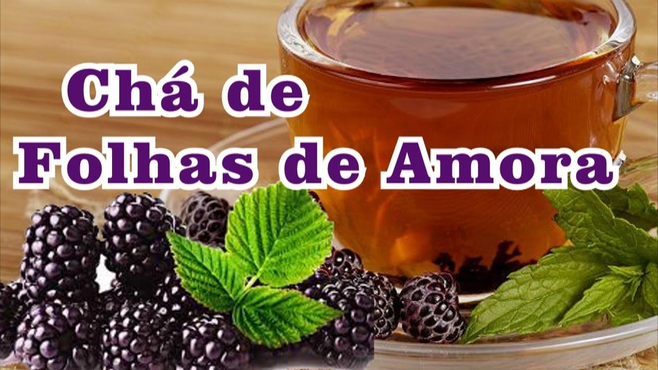 O Chá de Amora e o Equilíbrio Hormonal