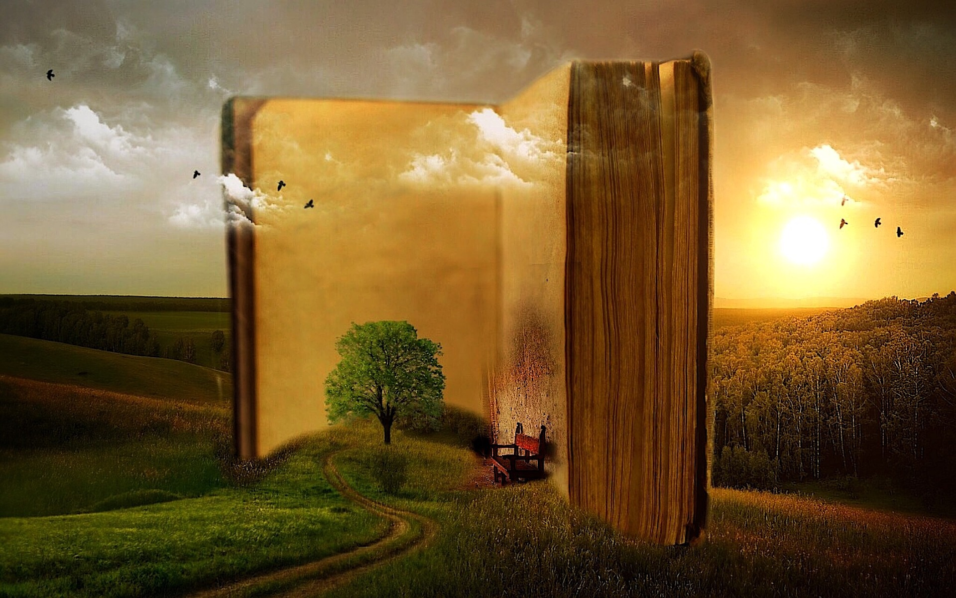 5 livros para estudar vendas