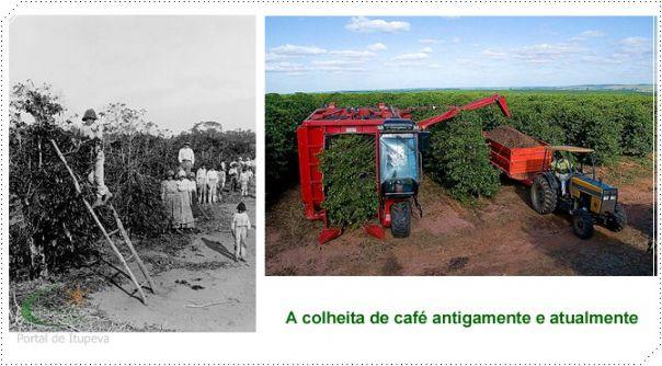 História do Café em Itupeva - SP