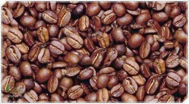 História do Café no Brasil
