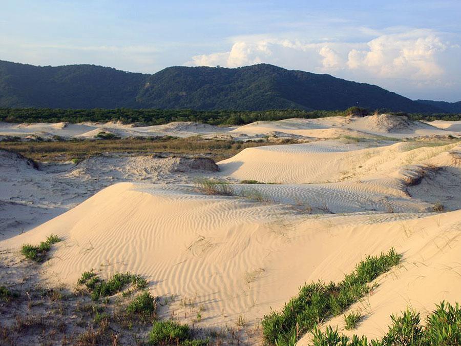 Dunas de areia no Estado de São Paulo que merecem a sua visita