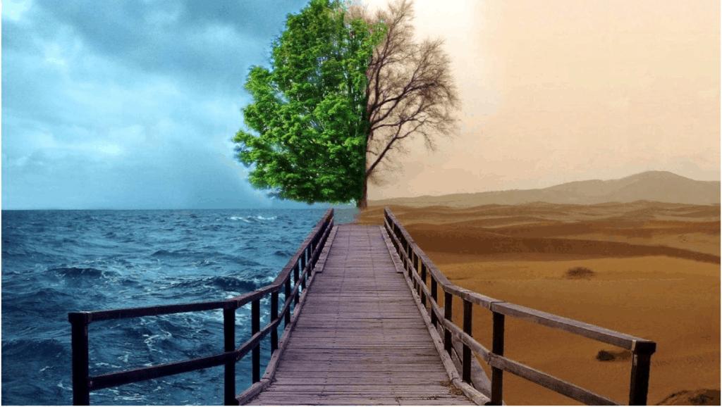 Reflexão Sobre Mudança na Visão da PNL