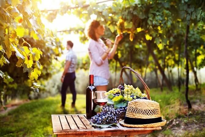Destino Jundiahy - Rota Turística da Uva em Jundiaí