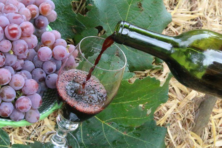 Abertura do Dia do Vinho será dia 15 de maio