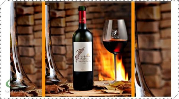 Saiba mais Sobre o Vinho