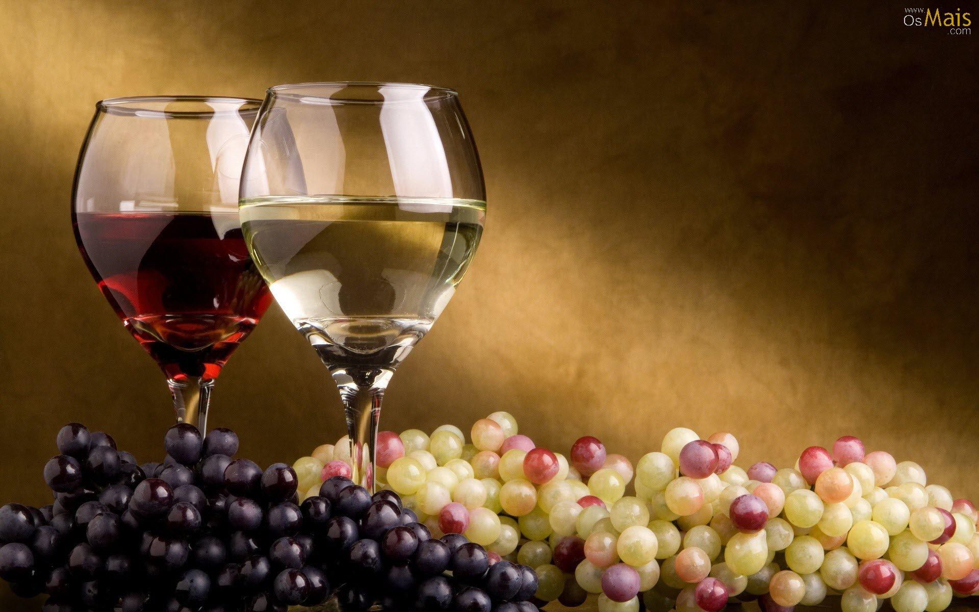 Vinhos o que você precisar saber e entender para degustar um bom vinho.